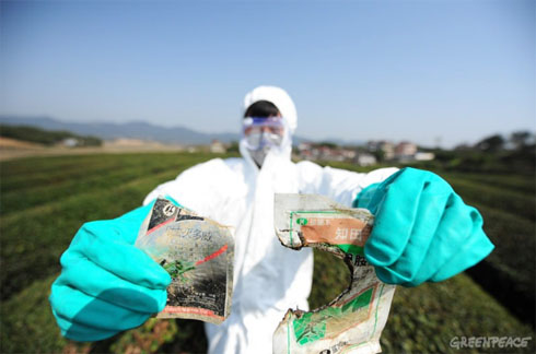 Greenpeace East-Asia: Banned pesticides found in teas produced by popular Chinese tea brands
